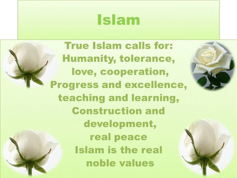 the real islam