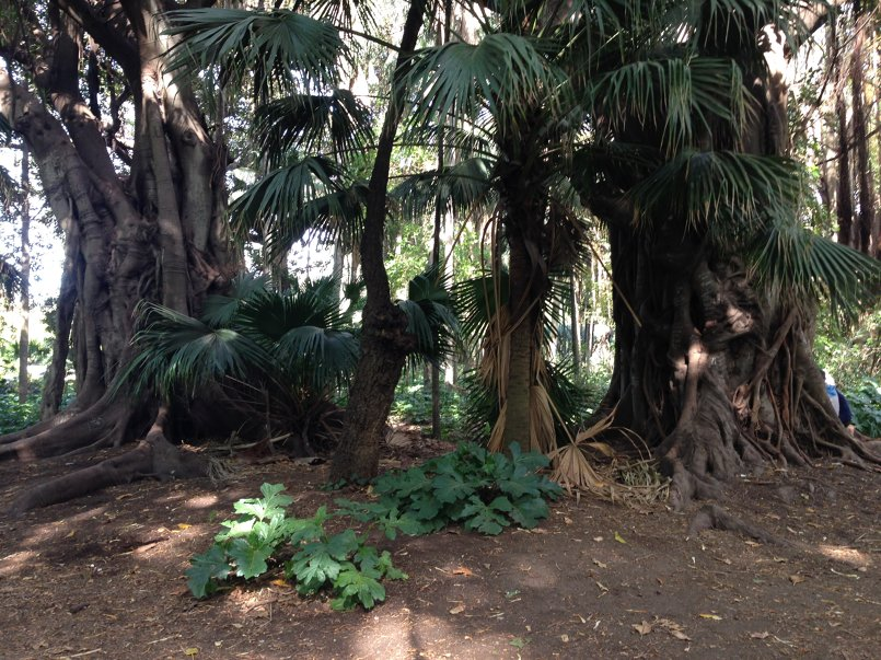 حديقة التجارب
