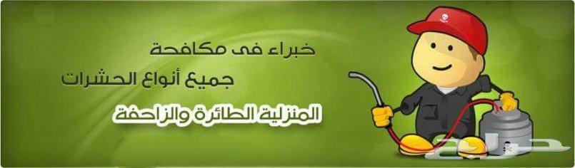 رش مبيد .رش مبيدات بالرياض.مكافحة الصراصير والنمل.