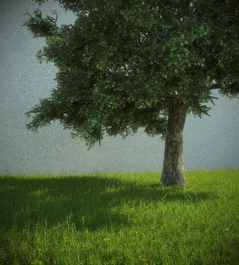 A simple grass test for an upcoming exterior scene for better quality: http://oi44.tinypic.com/2uggac5.jpg