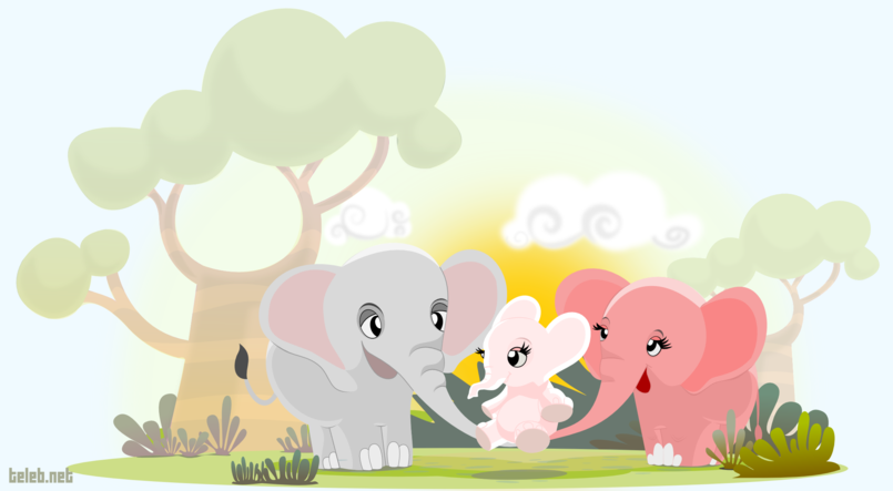 Our elephants family