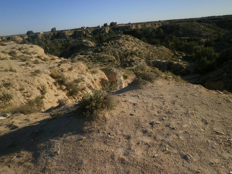 روعة الصحراء
