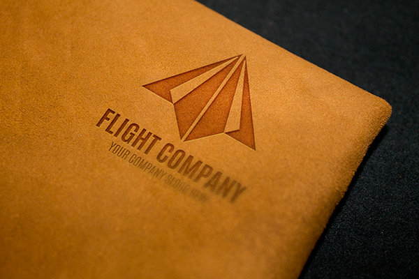 Flight_company_logo