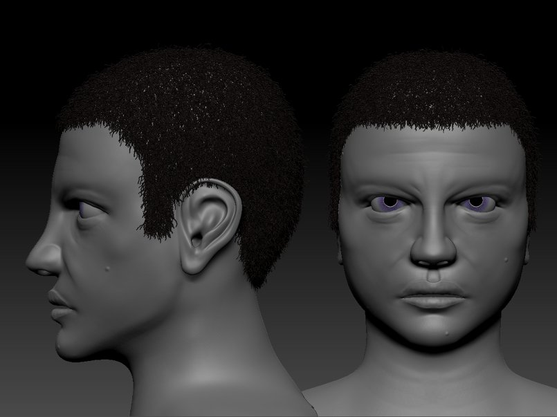 sculpting human face