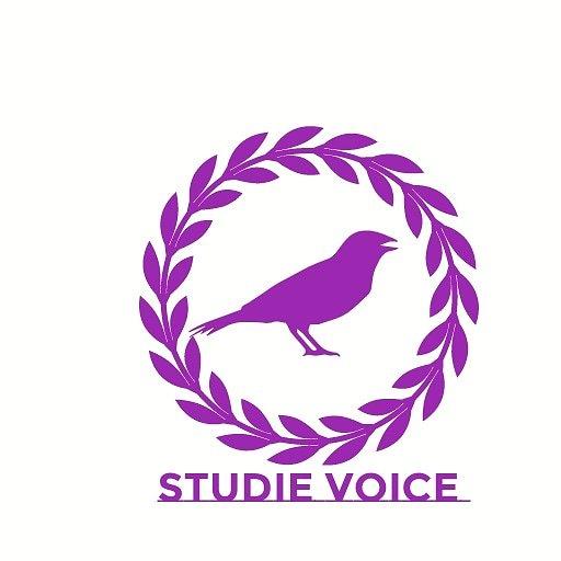 Logo storys