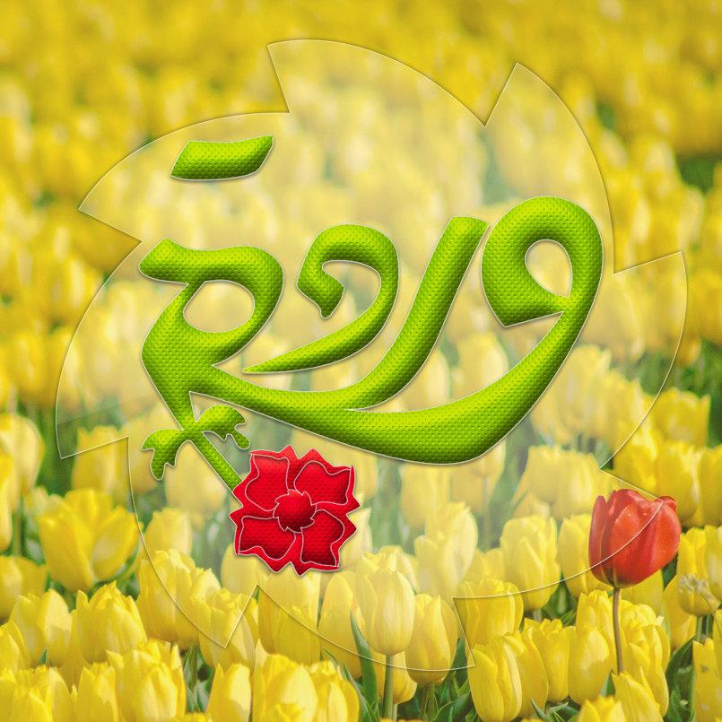 شعار وردة