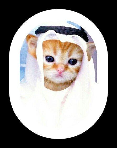 الشيخ بزون