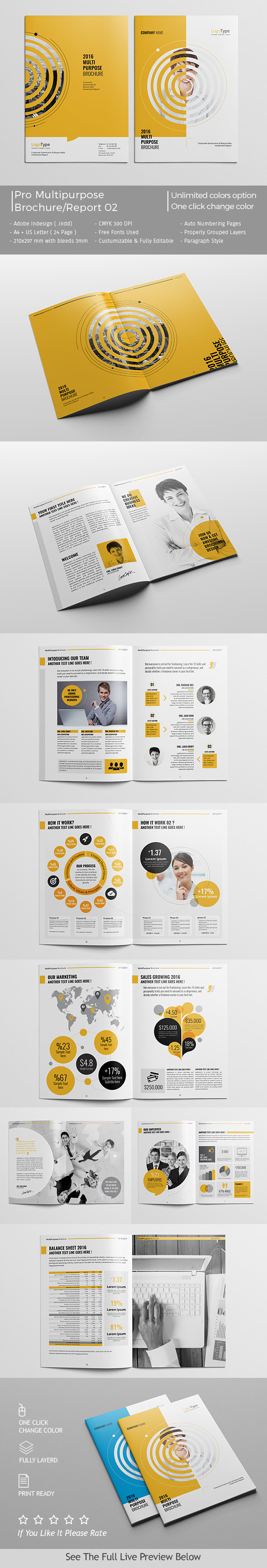 Brochure - Report Template