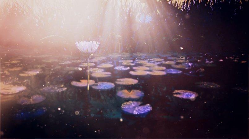 Beautiful Nature: Light look Development