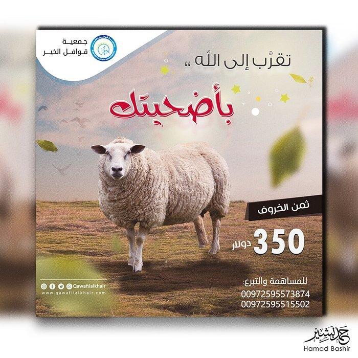 205 صور تصميم سوشل ميديا تبرع بحصص الأضاحي في عيد الاضحي social media