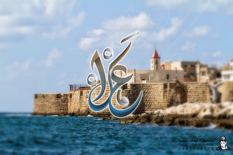 (مدينة عكا) فن التخطيط للمدن الفلسطينية