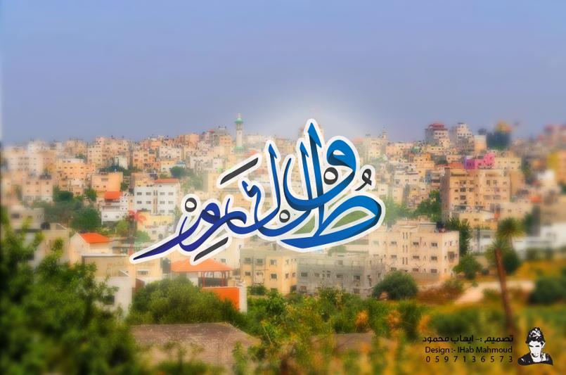 (مدينة طولكرم) فن التخطيط للمدن الفلسطينية