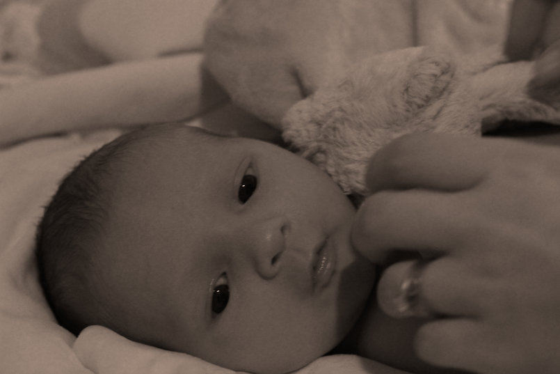 Photography - Child Portriature