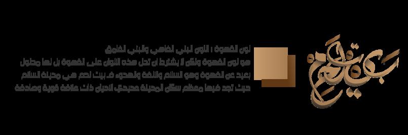 (مدينة بيت لحم تصميم ثاني ) فن التخطيط للمدن الفلسطينية