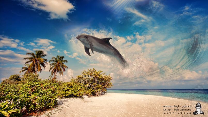 الدولفين الطائر