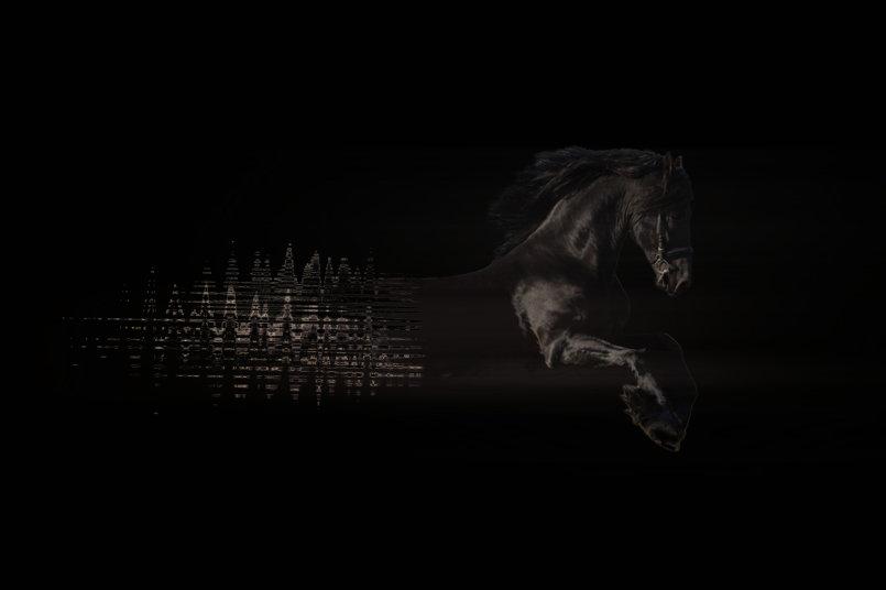 خيول سريعة