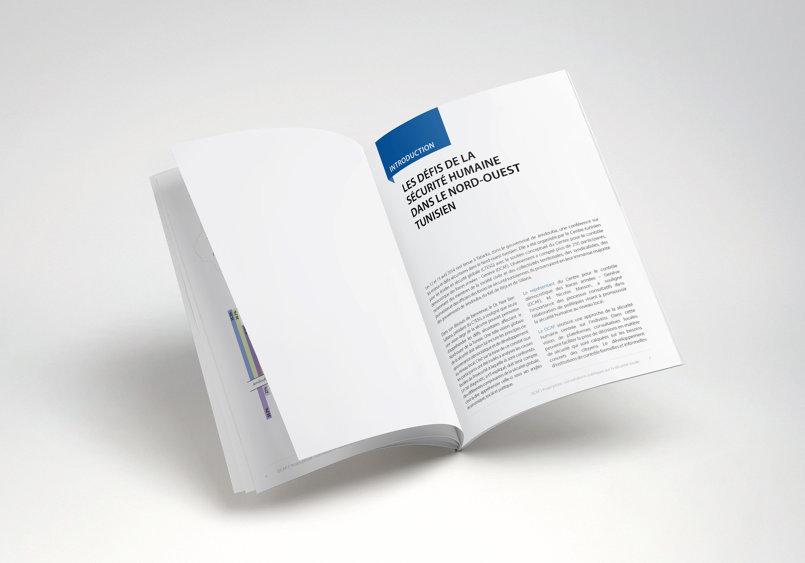 DCAF - Publication