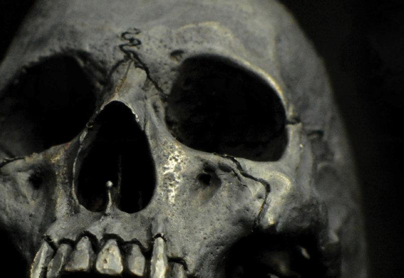 غلاف كتاب جماجم -cover book  skulls