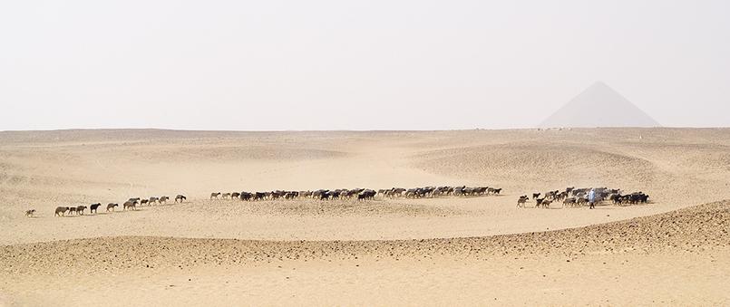 Dahshour/Egypt