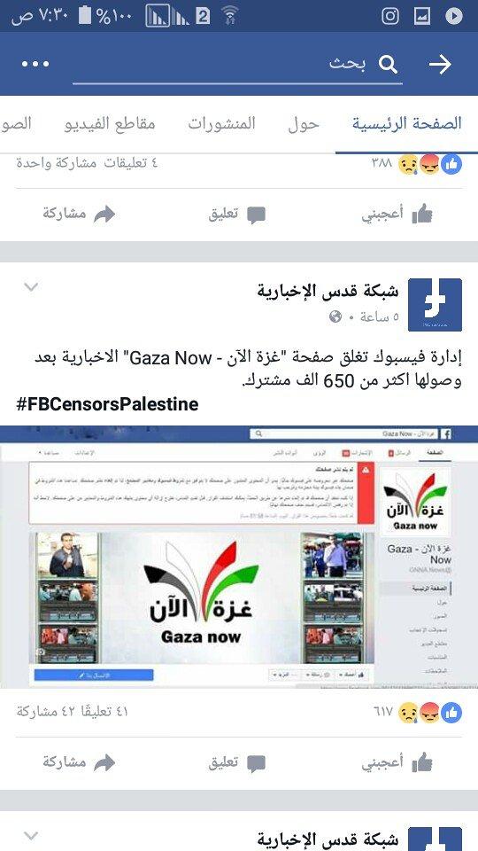 فلسطين حرة PHALASTIN FREE
