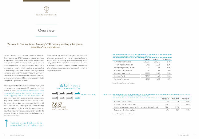 Zara Investment Holding 2013 Annual Report