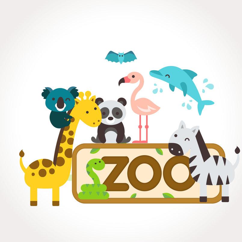 zoo dsing