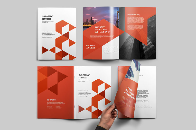 Brochure Template for Indesign