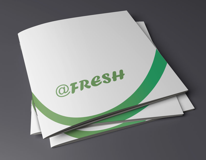 @fresh brochre
