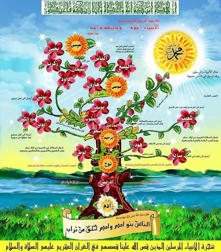 شجرة الانبياء