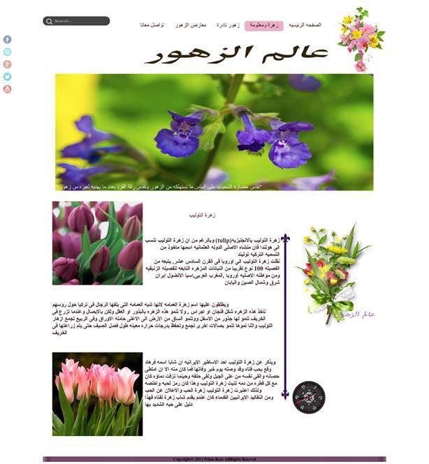 http://flowerworld.hol.es/AroundtheWorld.html