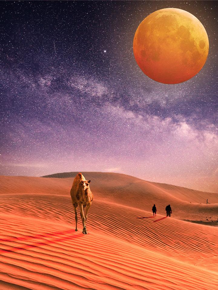 تصميم لصحراء