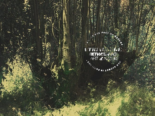 مشروع Trialogue between you nature and architecture