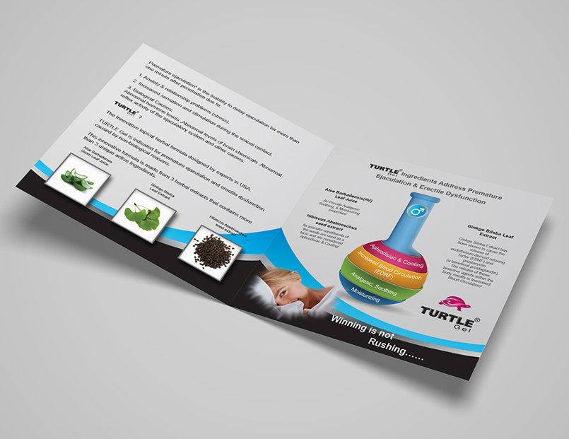 Turtle Brochure