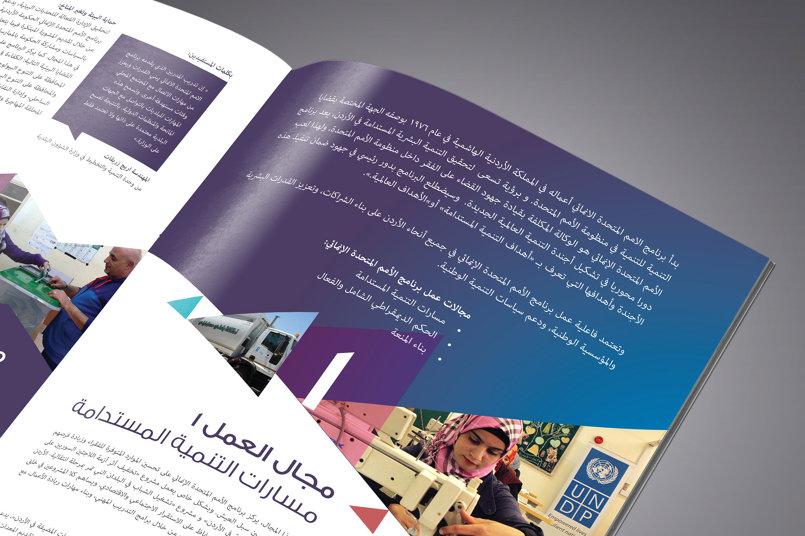 UNDP Report