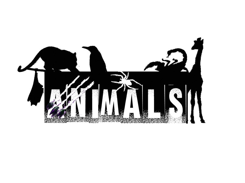 logo animals magazine