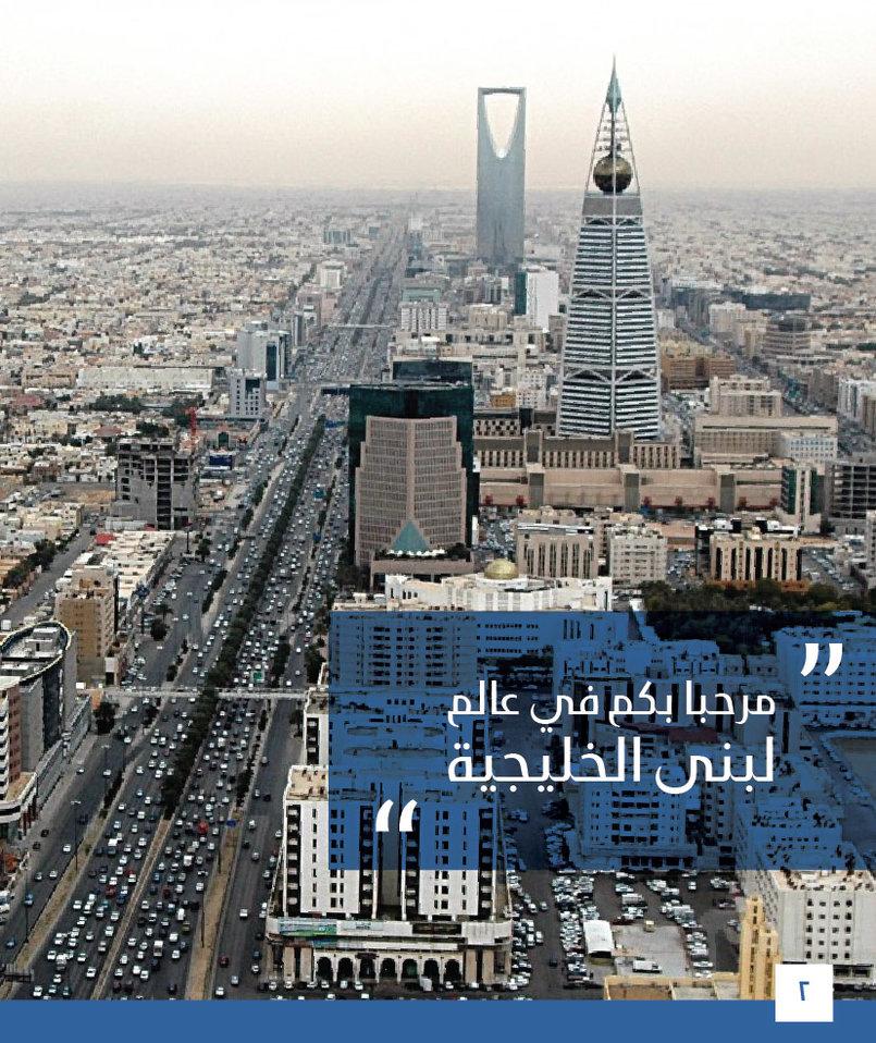 بروشور لبنى الخليجية للمقاولات
