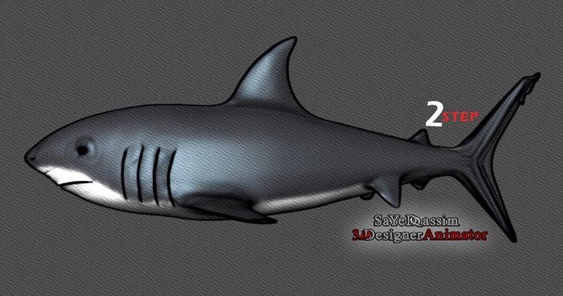 3D modeling shark