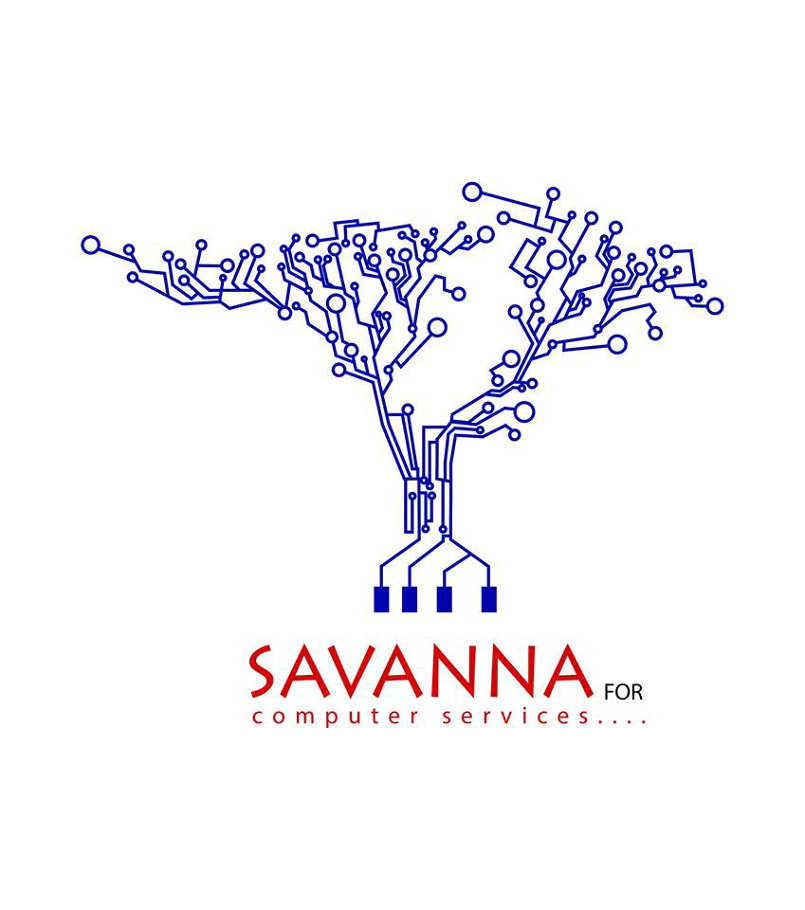 sanava for computer services