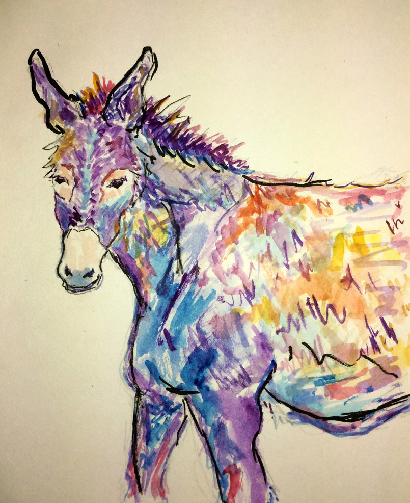 Donkey Paintings and Sketches