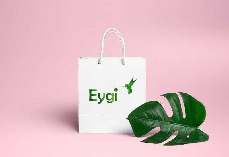 Logo Eygi