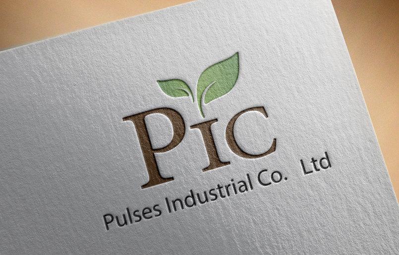 logo design PIC