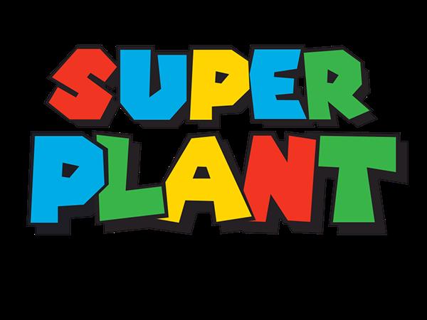 Super Plant عرض الإطلاق - CUBE studio