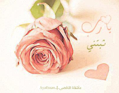 اللهمـ ثبــاتــًا ~