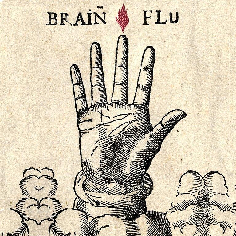Brainflu