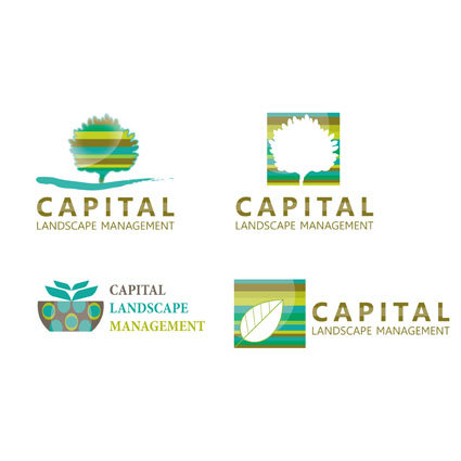 Logo Design for Capital Landscape Management