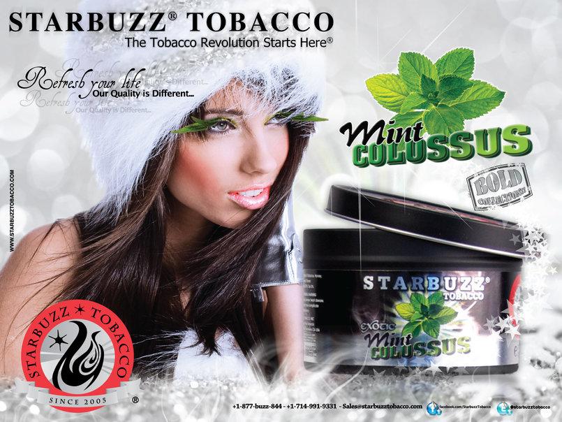 StarBuzz Poster Mint