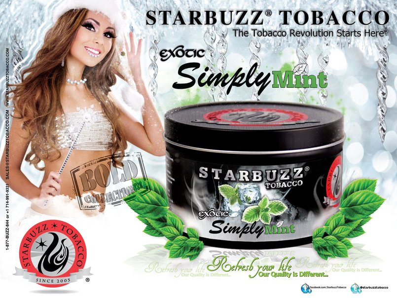 StarBuzz Tobacco Bold Simply Mint