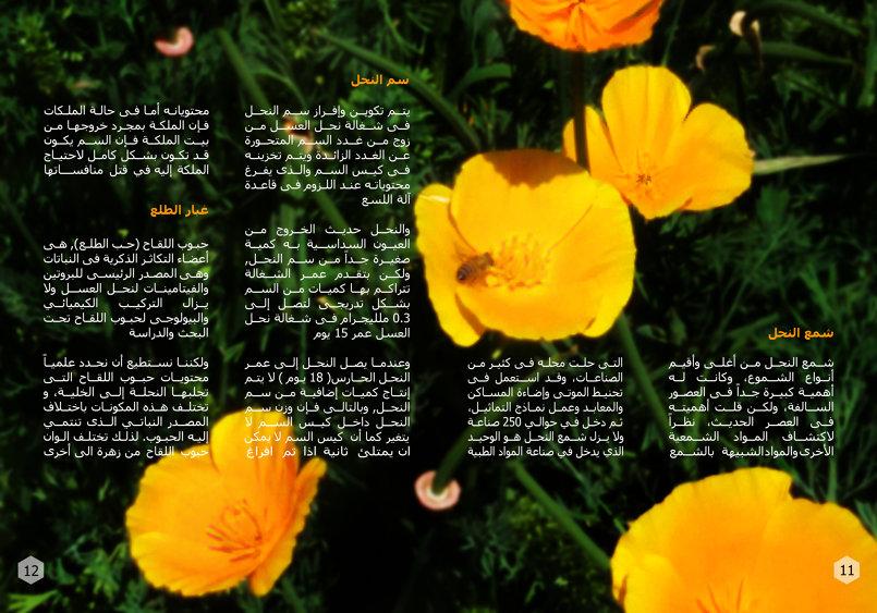 صفحات من كتيَب رحيق