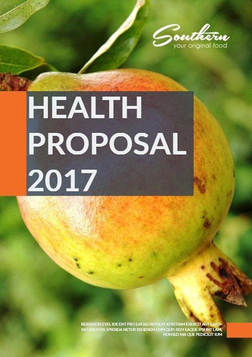 https://issuu.com/ghassnantar/docs/healthproposal