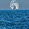 Mar Mar M